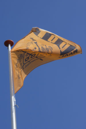 Vlag IMG 1373